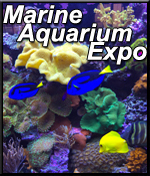 9th Annual Marine Aquarium Expo (MAX)