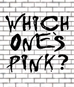 Which One's Pink? – A Tribute to the Music of Pink Floyd